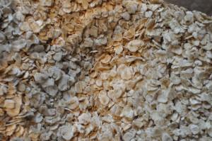 Havregrynskager med appelsin - nem opskrift
