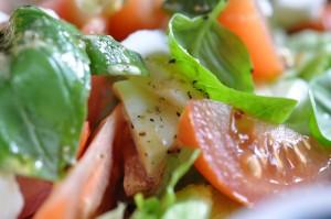 Tomatsalat med mozzarella og olie eddike dressing