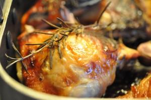 Kylling me dhonning, citron, hvidløg og rosmarin
