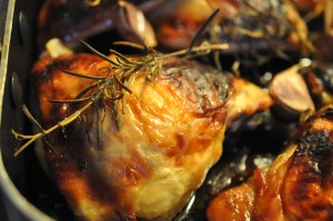 Kylling med honning, citron, hvidløg og rosmarin