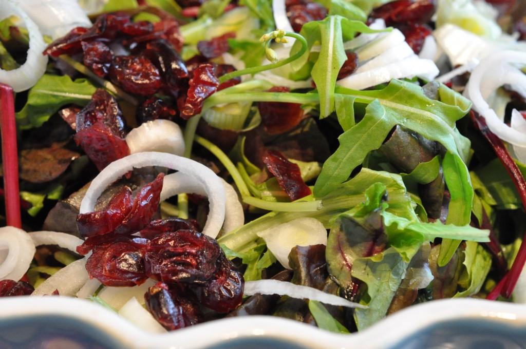 Rucola salat med tranebær og forårsløg - nem