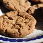 Sprøde cookies med kanel, kardemomme og chokolade