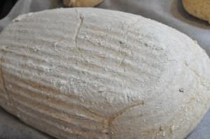 Smagfuldt brød med Manitoba- og grahamsmel