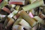 Sukkerfrit rabarbermarmelade med grønt melatin
