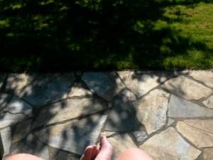 Grillede steaks, bønnesalat og sommerlykke i haven