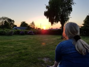 Sommersol, tur ud i det blå og dagens vinder i jordbærkage