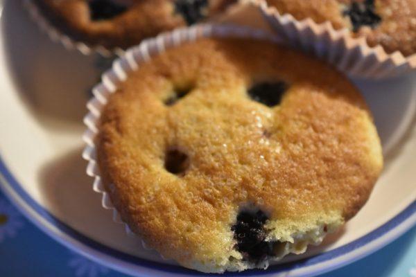Muffins med brombær og vanillje - nemme og lækre