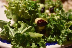 Salat med rosenkål, æble og tranebær - grov og rustik