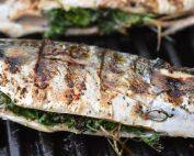 Grillet makrel med persille - makrel på grill