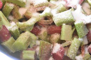 Rabarberkage nem frugtkage med rabarber