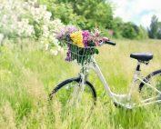 Modvind, regnvåd modvilje og hede elcykel-drømme