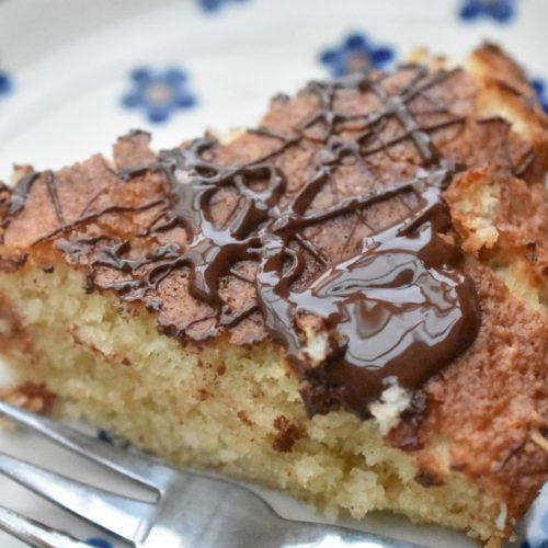Kage med kokos og chokolade - nem opskrift på kokoskage