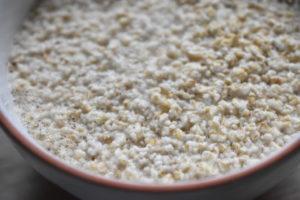 Havregrød - i mikroovn eller i gryde. Nem opskrift