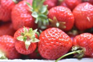 Jordbærkage - sukkerbrødskage med jordbær
