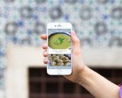 Noget i ovnen app - nu med 1600 opskrifter