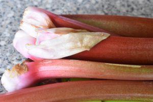 Bagte rabarber i ovn - nem kompot opskrift