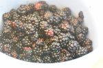 Brombærkompot - nem kompot med brombær