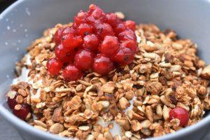 Rysteribs - nem opskrift til kager og desserter